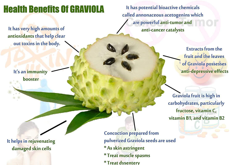 graviola_benefits